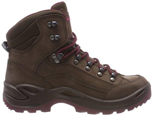 GTX Mid Brown Espresso Women's Boots 4251 Beere Lowa Renegade 4q6nP