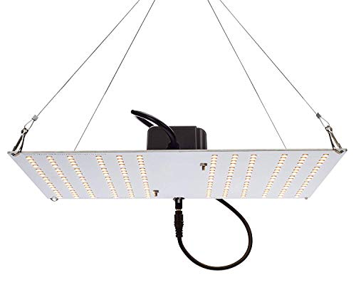 Horticulture Lighting Group HLG 100 V2 3000K Quantum Board LED Grow Light Veg & Bloom | Version 2 High-Efficiency Upgraded LM301B LED's