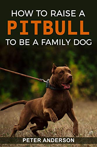 Pit bull: How To Raise A Pitbull To Be A Family Dog: history, overview, education, training