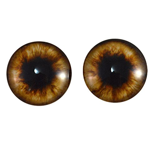 20mm Pair of Brown Teddy Bear Glass Eyes for Jewelry Making, Dolls, Sculptures, More