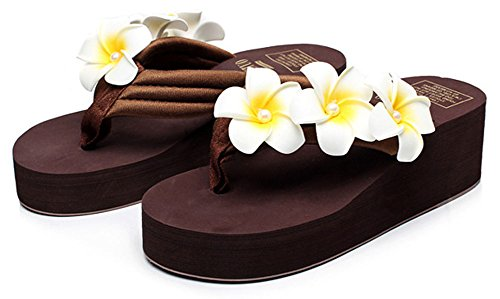 Flops Summer Fashion Bohemia Women's Elegant Coffee Creative Flip AZqPvRW
