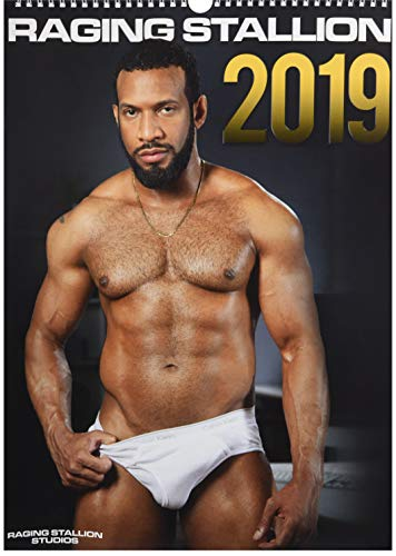 Raging Stallion 2019 (Calendars 2019)