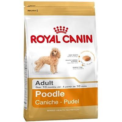 Royal Canin Adult Complete Dog Food for Poodle (1.5kg)