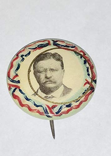 "CAMPAIGN POLITICAL PINBACK BUTTON THEODORE TEDDY ROOSEVELT APPROX SIZE 3/4"" cello"
