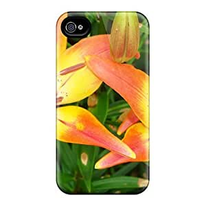 New Fashion Case Cover For Iphone 4/4s(lRstnAm1660zwiPt)