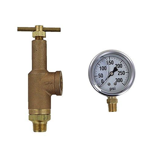 TeeJet 6815-1/2-HSS-300 Brass Pressure Regulator with 300 PSI Pressure Gauge (Bundle, 2 Items)