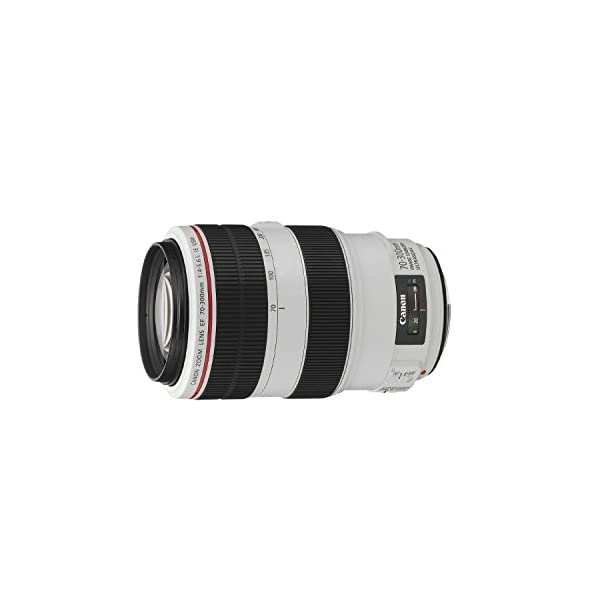 RetinaPix Canon EF 70-300mm f/4-5.6L is USM Zoom Lens for Canon Digital SLR Camera (Black)