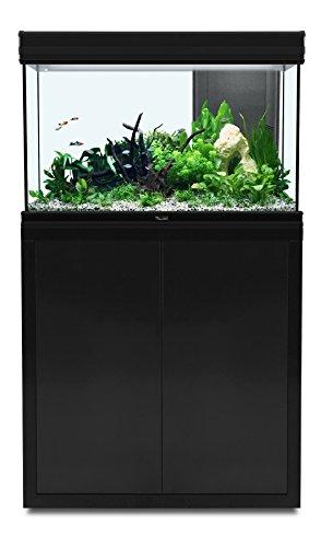 Acuario 176 L Fusion 80 x 40 LED negro Aquatlantis: Amazon.es: Productos para mascotas