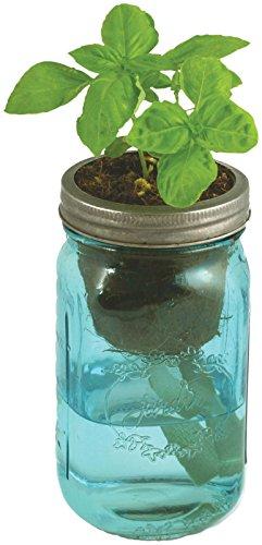 Herb Garden Kit Self Watering Indoor Planter With