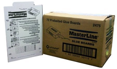 Masterline Mouse   Insect Glue Board Traps 72 Count Box Catch Mice Insects Scorpions Spiders Centipedes Lizards Etc  Made By Atlantic Paste Just Like Catchmaster    Trampas De Goma Pre Cebades Para Ratones  Mice  Y Insectos  Insects