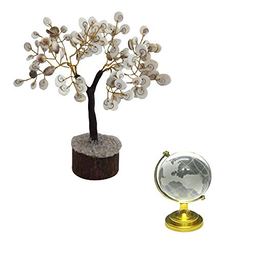 Divya Mantra Feng Shui Crystal Globe & Natural Gomati Chakra Healing Gem Stone Bonsai Fortune Vastu Plant Tree; Good Luck, Wealth, Success & Prosperity; Home Office Table Decor Gift Item; 50 Stones (Best Mantra For Success In Studies)