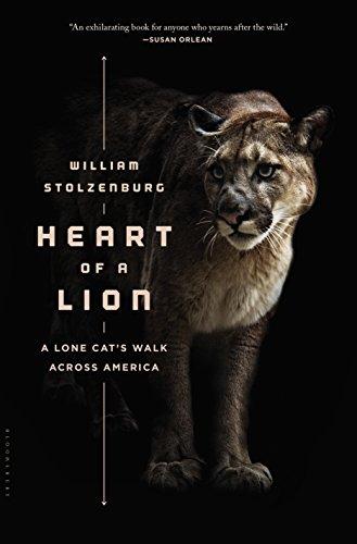 (Heart of a Lion: A Lone Cat's Walk Across)