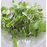 David's Garden Seeds Micro-Greens MIld Micro Mix RSL8723 (Green) One Ounce Pack
