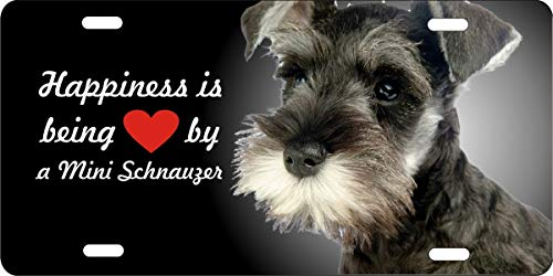 (License Plate Covers Miniature Schnauzer Customized Aluminum Metal, Decorative Front Car Tag Sign with 4 Holes, Vanity Tag 6