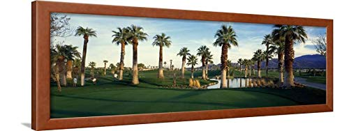 Riverside Spring - ArtEdge Trees Desert Golf Course, Palm Springs, Riverside County, California Brown Framed Wall Art Print, 12x36 in