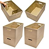 Rubbermaid (6 Pack XL Bento Box Storage Containers Handles Dividers Clothes Closet Organizer