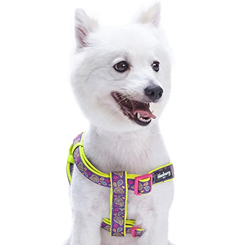 Blueberry Pet New 5 Colors Soft & Comfy Step-in Paisley Flower Print Dog Harness, Chest Girth 26 - 39, Dark Orchid, Large, Adjustable Harnesses for Dogs