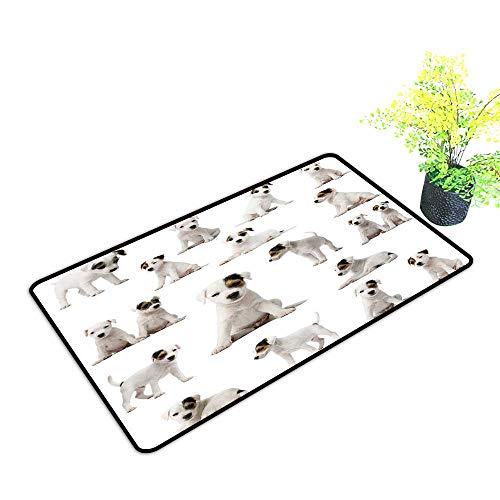 (Large Outdoor Door Mats Collection of Parson Russell Terrier Puppies in Front of White Background Use for Entrance Outside Doormat Patio W39 x H19 INCH)