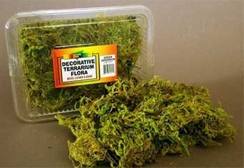 Nature Zone SNZ52412 Terrarium Flora Reptile Bedding/Substrate, Sheet Moss, 1/2-Pound