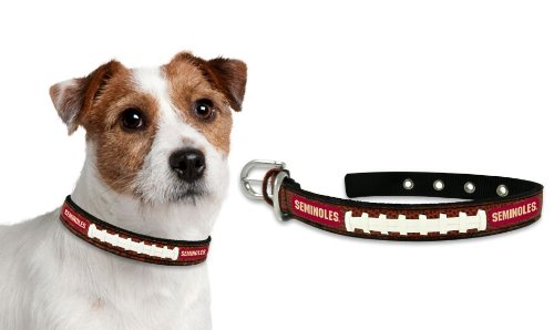 W2B - Florida State Seminoles Dog Collar - Small