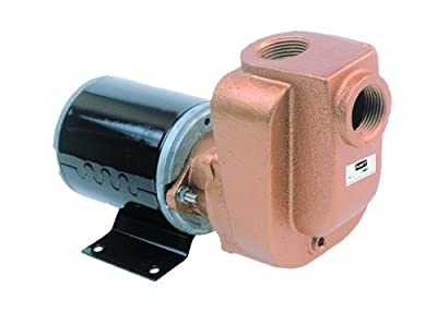"AMT Self-Priming Utility Pumps, 3/4"" and 1"" NPT Female Suction & Discharge Ports"