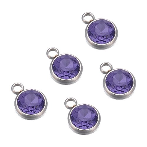 (5PCS Silver Tone Stainless Steel Inlaid Purple Rhinestone Round Charm Pendant 14mmx10mm)