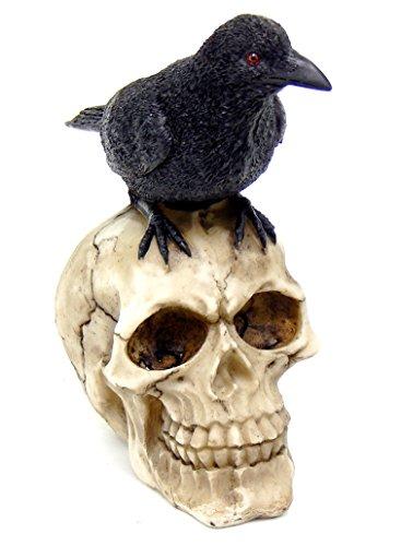 Bellaa 26751 Raven on Skull Collectible Bird Crow Skeleton Figurine Statue Model -