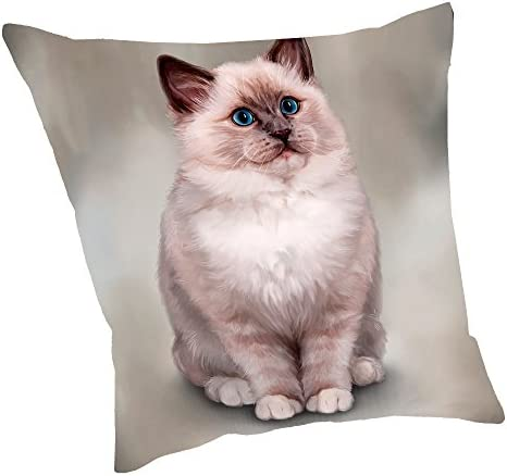 Doggie of the Day Ragdoll Cat Throw Pillow D046 14×14
