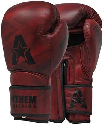 Anthem Athletics STORMBRINGER Leather Boxing product image