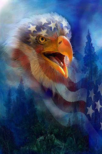 Diamond Painting Kits for Adults by Paint With Diamonds XL 60x40cm 'Eagle's Cry' Full Canvas Square Diamonds (Plus Free Premium Diamond Pen) by Paint With Diamonds (Image #9)