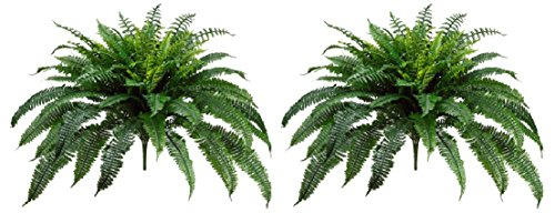 2 BOSTON FERN 48'' SPREAD X 90 LEAF BUSH PLANT ARTIFICIAL TREE FLOWER SILK DECOR by Black Decor Home