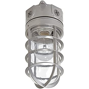 Woods Vandal Resistant Security Light With Ceiling Mount