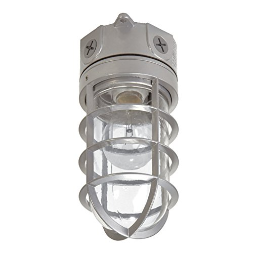 EATON Lighting VT100G 100W Vapor Tight ()