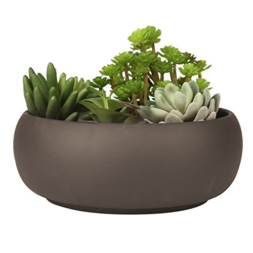 Modern Unglazed Round Ceramic Succulent Cactus Planter Pot with Brown Matte Finish (Planter Bowl Cactus)