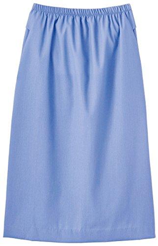 Fundamentals by White Swan Women's Elastic Waist Solid Scrub Skirt X-Small Ceil by White Swan Brands