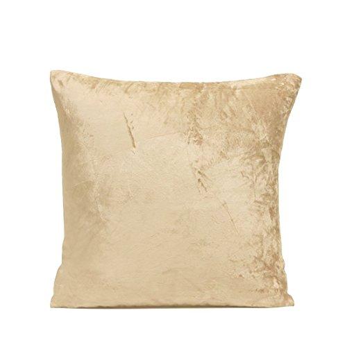 The White Petals- Gold Velvet Euro Pillow Sham Cover (1 European Sham Cover, 26X26 inch, Champagne Gold, Soft Cotton Velvet) (Sham Gold)