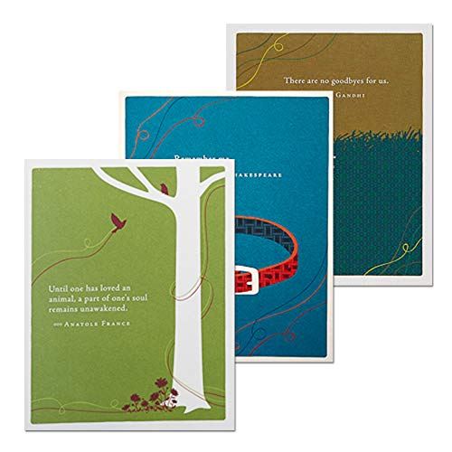 Worth Remembering Pet Sympathy Bundle by Positively Green, Set of 3 Different Greeting Card Designs with Sentiments, Three White Envelopes Included (Shakespeare On Death Of A Loved One)