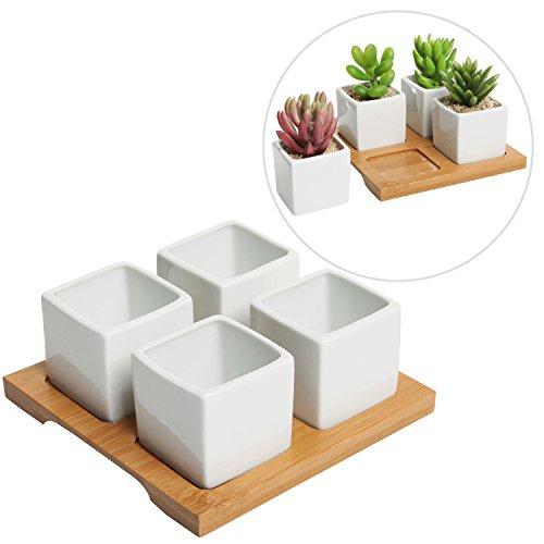 4 Piece Modern White Mini Square Cube Ceramic Succulent Plan