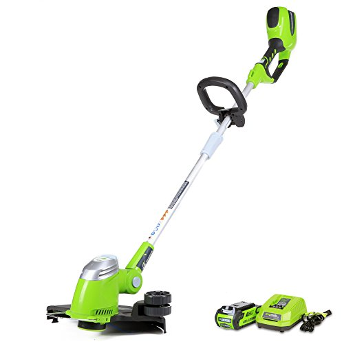 Greenworks 13-Inch 40V Cordless String Trimmer/Edger, 2.0 AH Battery Included 21302 by Greenworks