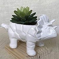 White Triceratop Yardwe Cartoon Dinosaur Ceramic Succulent Planter Water Culture Hydroponics Bonsai Cactus Flower Pot Vase Holder Desktop Decorative Organizer