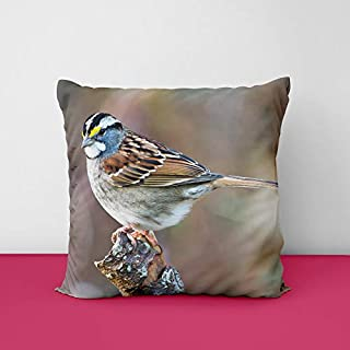41%2BE32tYXhL. SS320 Colour Sperow Square Design Printed Cushion Cover