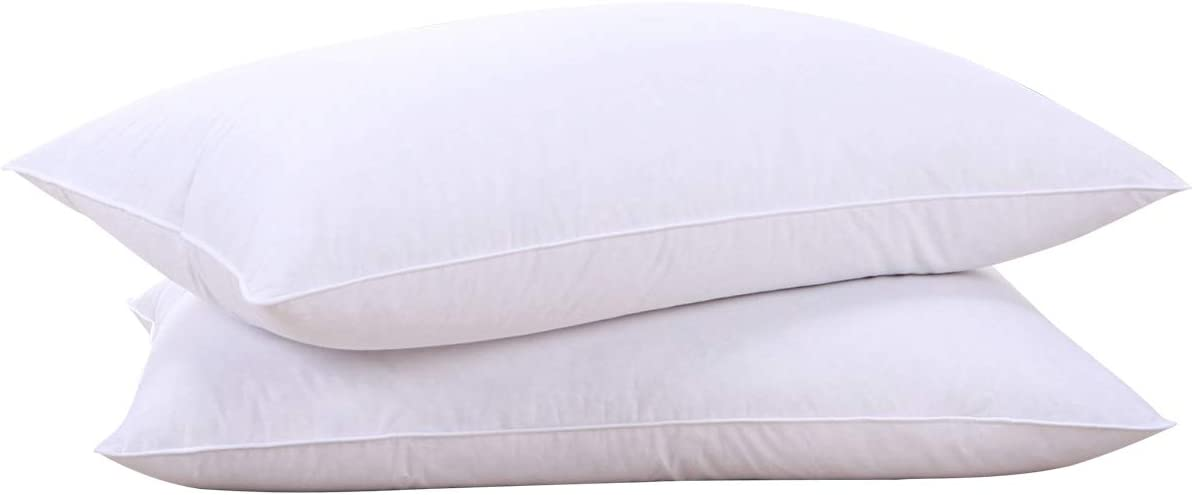 Best Budget Goose Down Pillow