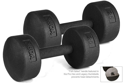 York Barbell 25 lb Legacy Solid Professional Round Dumbbells