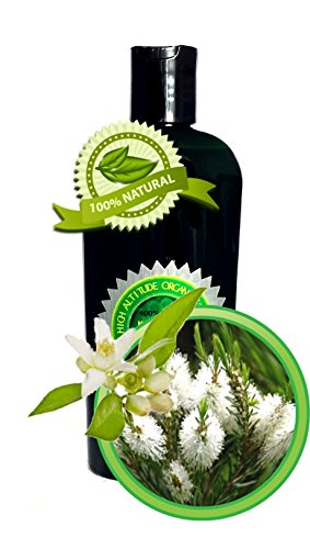 TEA TREE TEMPTATIONS Massage Oil 100% All-Natural and Organic - 8oz