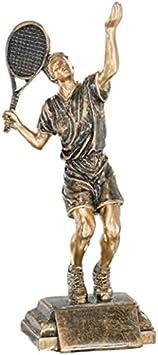 Trofeos de Tenis PACK de 3 GRABADO Resina 25cm Trofeos PERSONALIZADOS Trofeos Deportivos: Amazon.es: Deportes y aire libre
