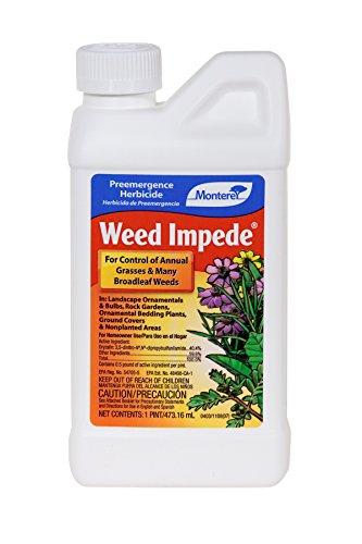 Monterey Weed Impede (Surflan Herbicide) Monterey Lawn & Garden Pre Emergent Herbicides-Qt by Monterey Lawn & Garden