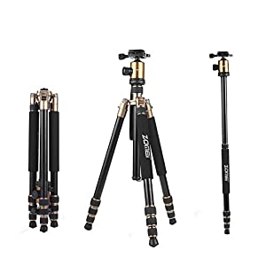 ZOMEi Z818 Lightweight DSLR Tripod With 360 Degree Ball Head and Carrying Bag For Canon Nikon Sony Samsung Olympus Cameras ( Gold )
