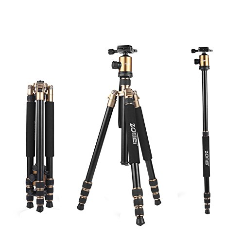 ZOMEi Z818 Lightweight DSLR Tripod with 360 Degree Ball Head and Carrying Bag for Canon Nikon Sony Samsung Olympus Cameras (Gold)