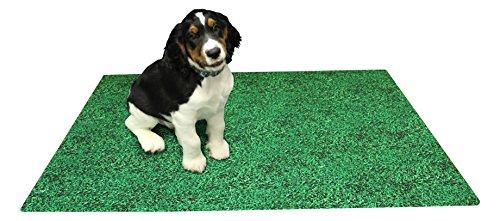 Puppy Training Mat (Drymate Potty Training Mat, 24