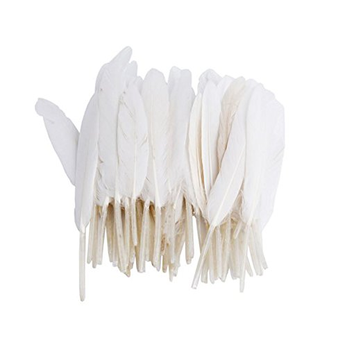 Vivian White Goose Feathers 6-8 inch Craft For